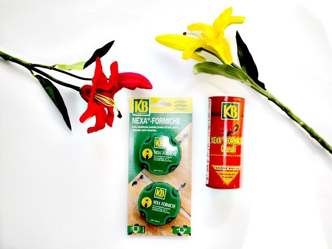 gogoverde-prodotti-anti-formiche