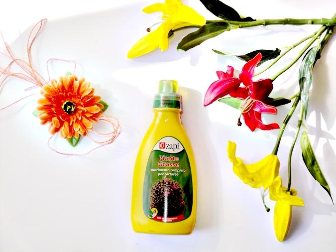 gogoverde-zapi-piante-grasse-cactus-concime