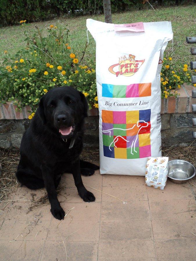 pets-planet-cibo-cani