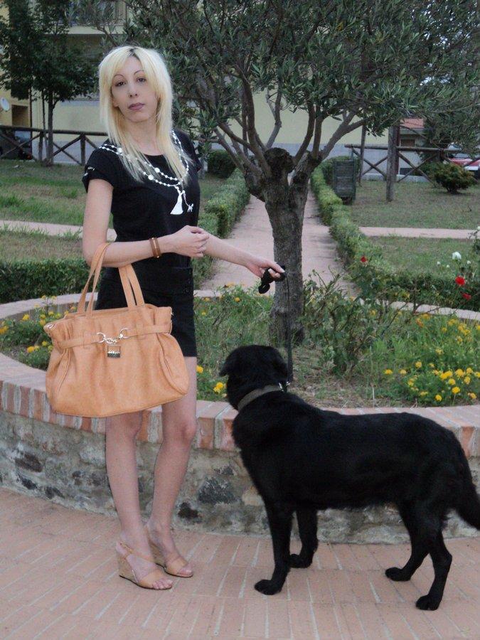 wedding-dog-sitter-tshirt