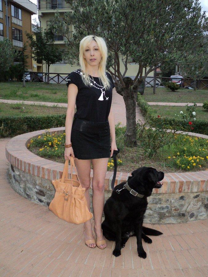 wedding-dog-sitter